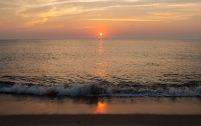 Things to Do on Cape Cod in June