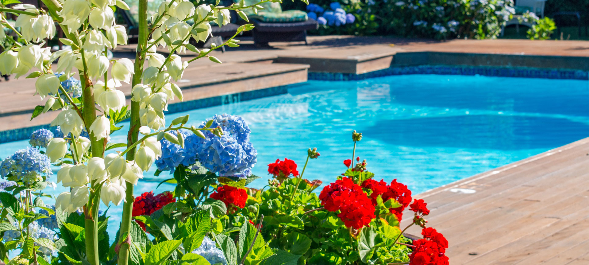 Flowers with Pool | Brewster By the Sea Cape Cod Inn | Brewster, MA