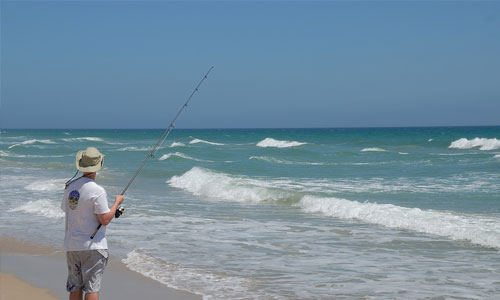 Sport Fishing Photo | Brewster By the Sea Bed and breakfast | Cape Cod, Brewster, MA