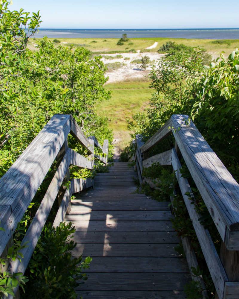 John Wing Island Trail - Hiking Cape Cod | Brewster By the Sea Cape Cod Inn | Brewster, MA