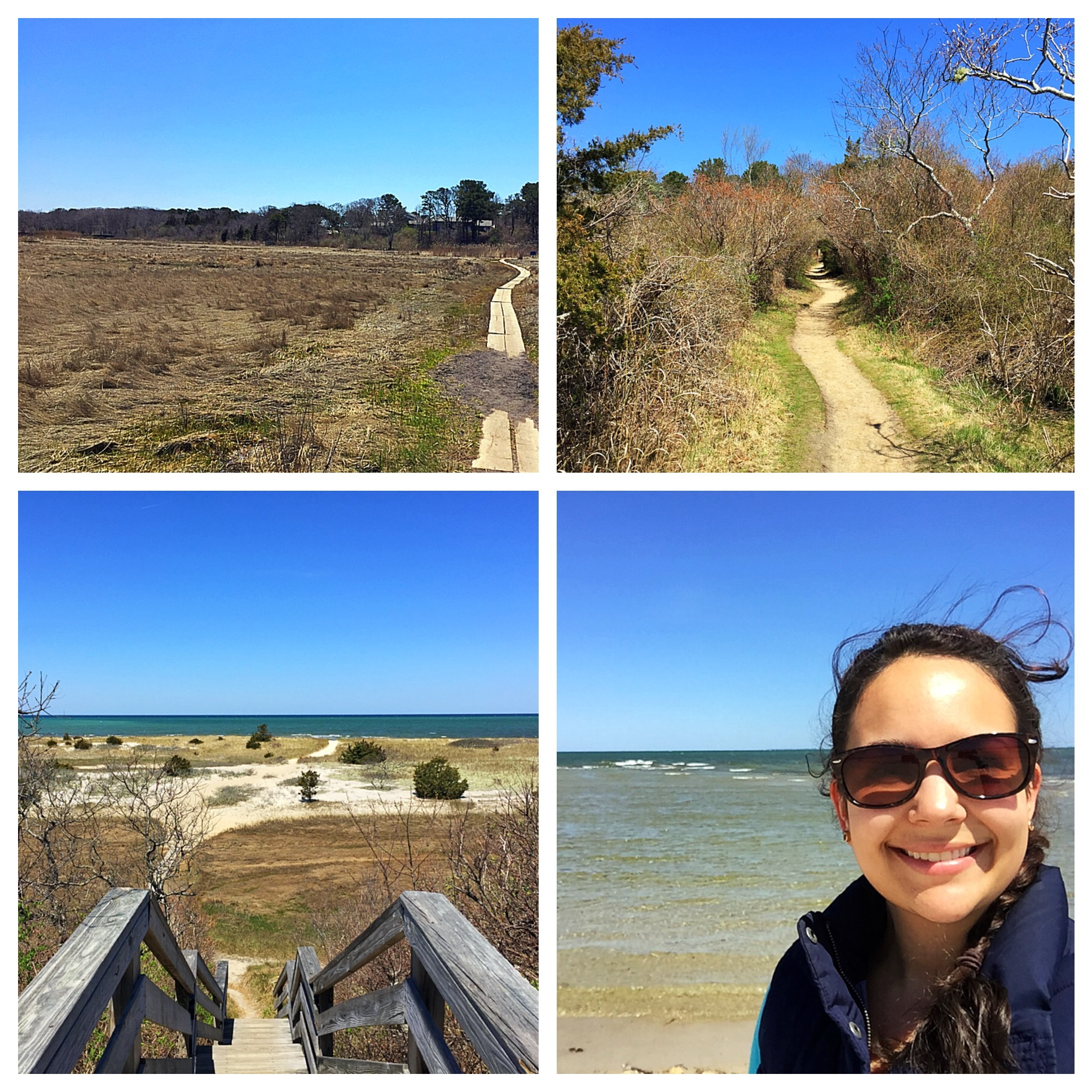 Natural History Museum:John Wing Trail  | Brewster By the Sea Cape Cod Inn | Brewster, MA