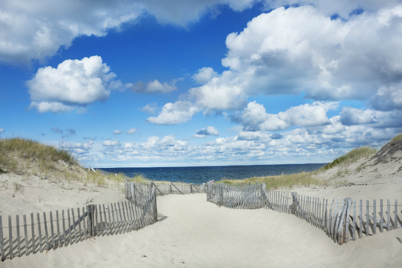 Pathway leading to Race Point Beach in Provincetown on a sunny day with clouds in the sky | Brewster By the Sea Cape Cod Inn | Brewster, MA