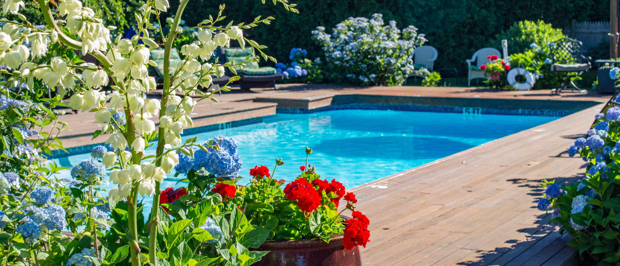 Flowers surrounding the pool and deck.